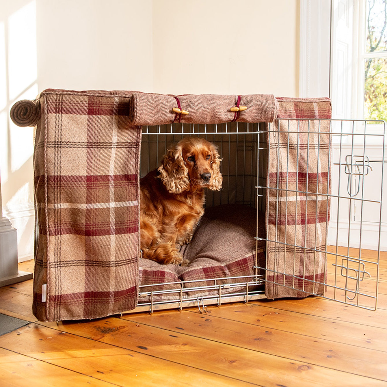 cocker spaniel sitting in her crate set