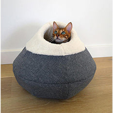 Cat popping up out of Rosewood round cosy cat cave