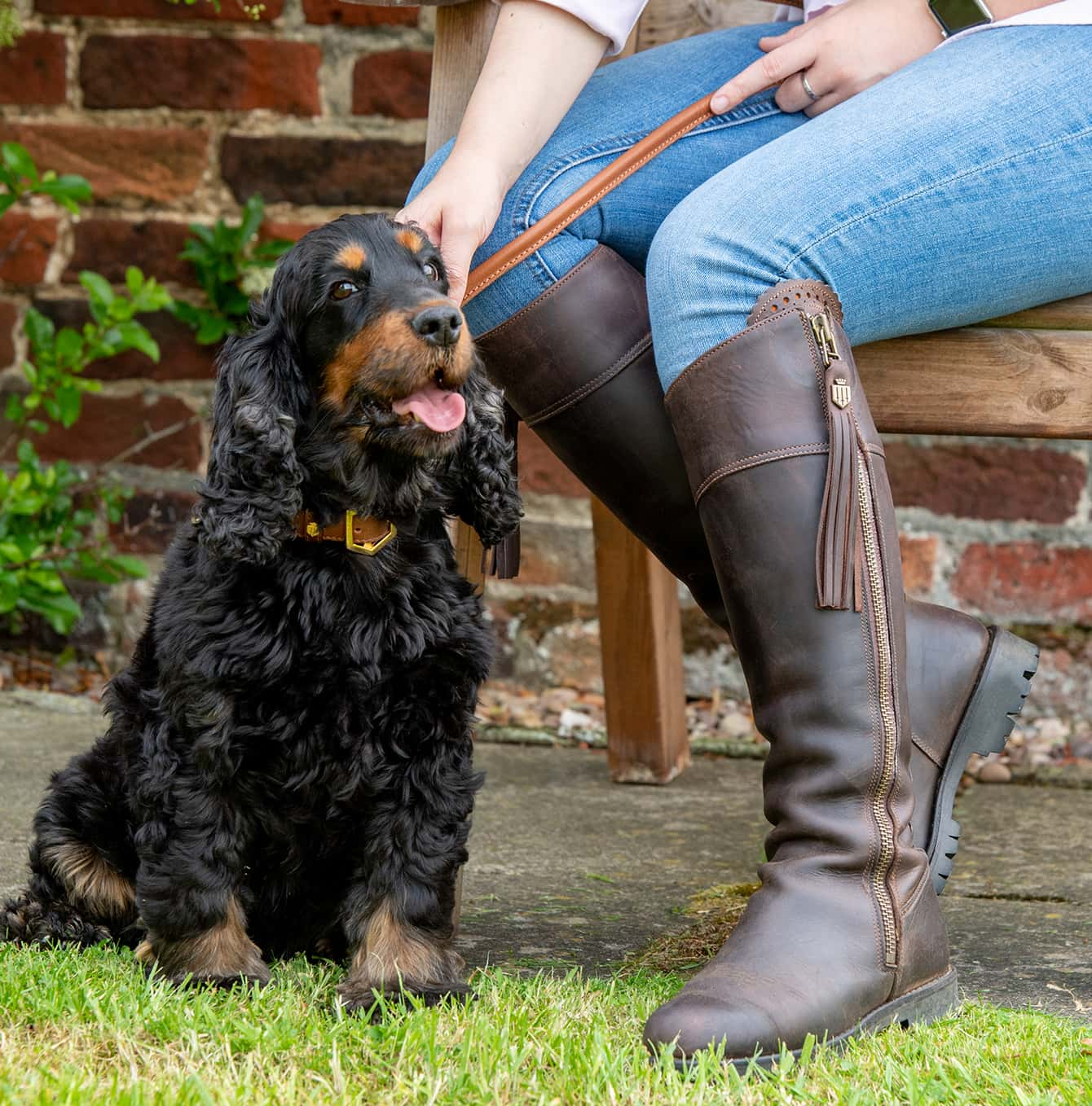 Woman wearing Fairfax & favour Imperial Explorer knee high boots with her spaniel wearing a Fairfax & Favor Fitzroy Collar.