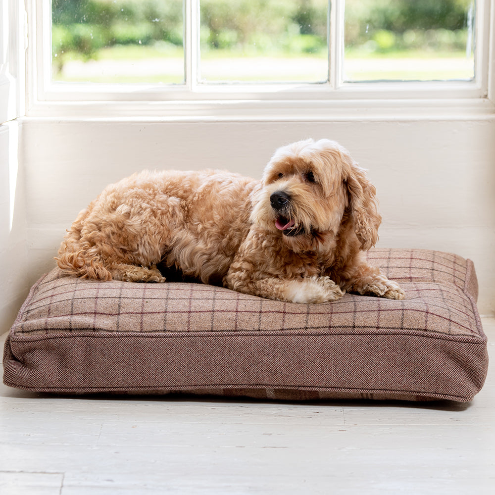 Mulberry Balmoral Twist Cushion by Lords & Labradors - PRE ORDER