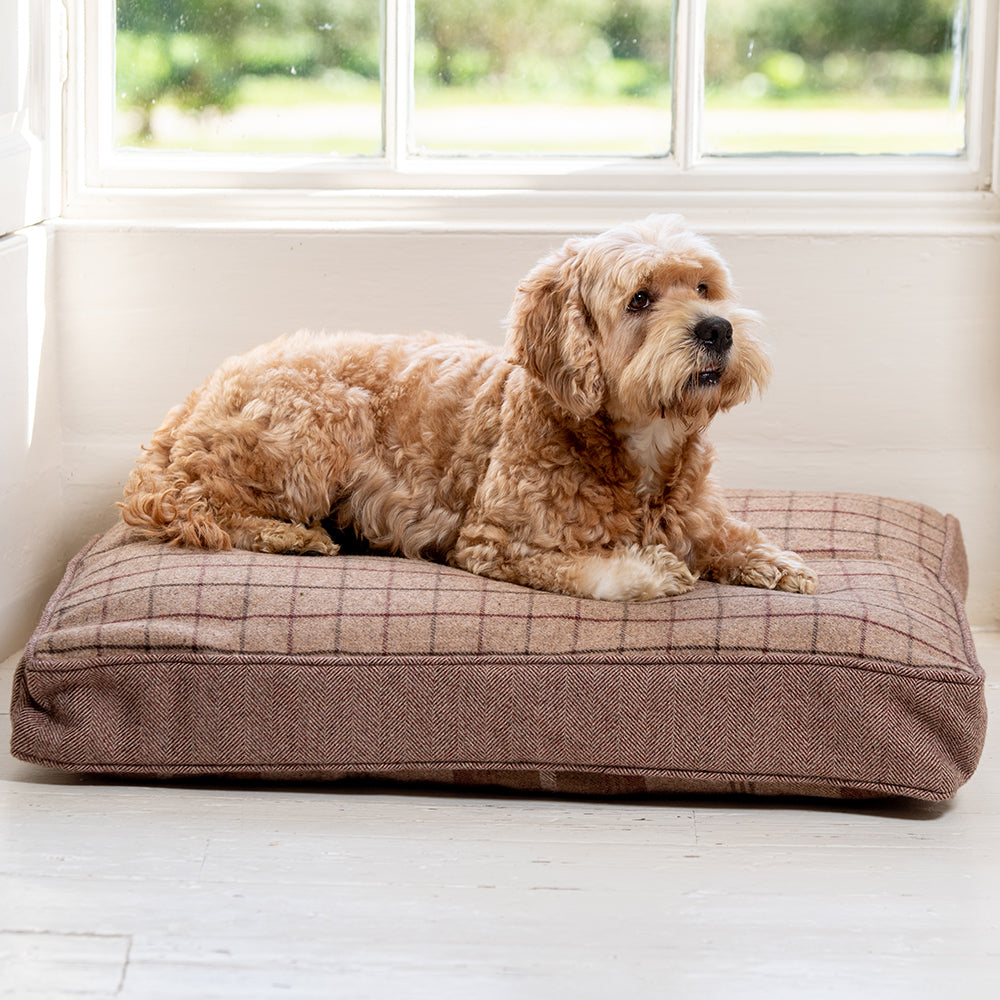Mulberry Balmoral Twist Cushion by Lords & Labradors