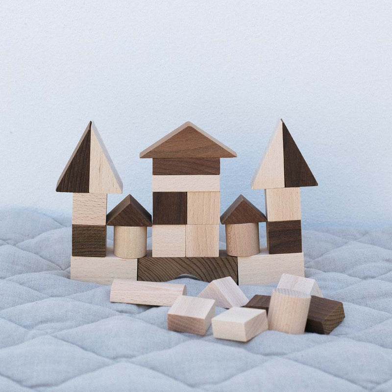 Warren Hill Goki Nature Building Blocks Wooden Toys