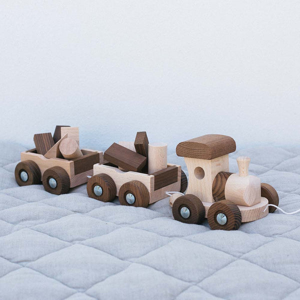 Warren Hill Goki Nature Train Amsterdam Wooden Toys