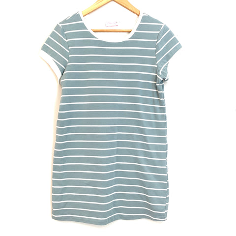 Pink Lily Blue Stripe T- Shirt Dress with Full Lining- Size S