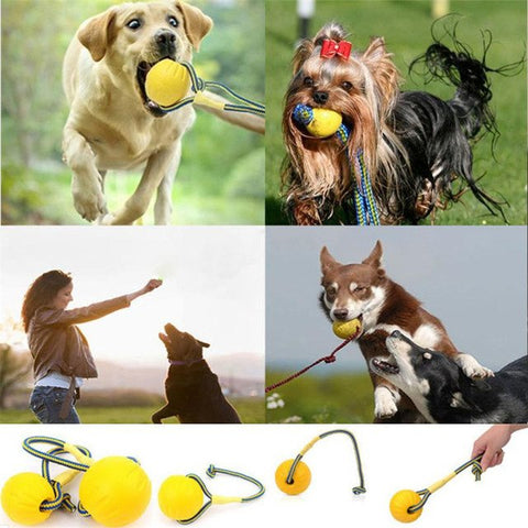 Dog Training Toy Ball Indestructible