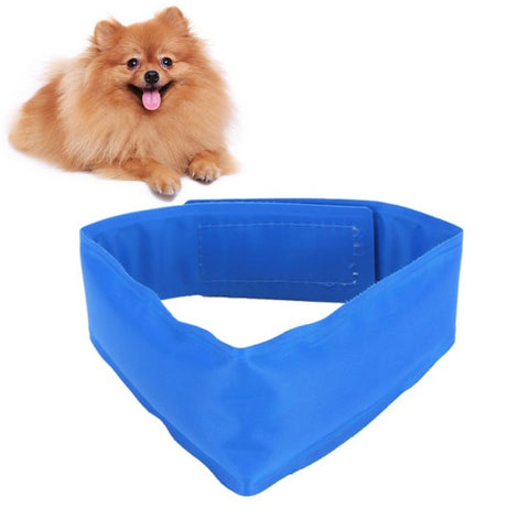 Dog Cooling Collars Safe Gel Leash -  Sport Pet Shop