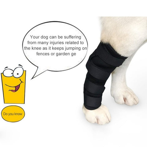 Dogs Injured Leg Protector Bandages
