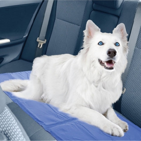 Summer Pet Mat Dog / Cat Cool Ice Mat Pad