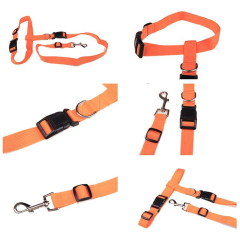 Waist dog leash running / jogging dog