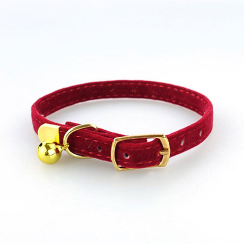 Image of Cat Puppies Collar
