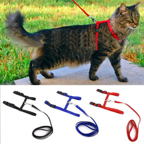 Adjustable Nylon Cat Collar Harness And Leash- Pet Traction