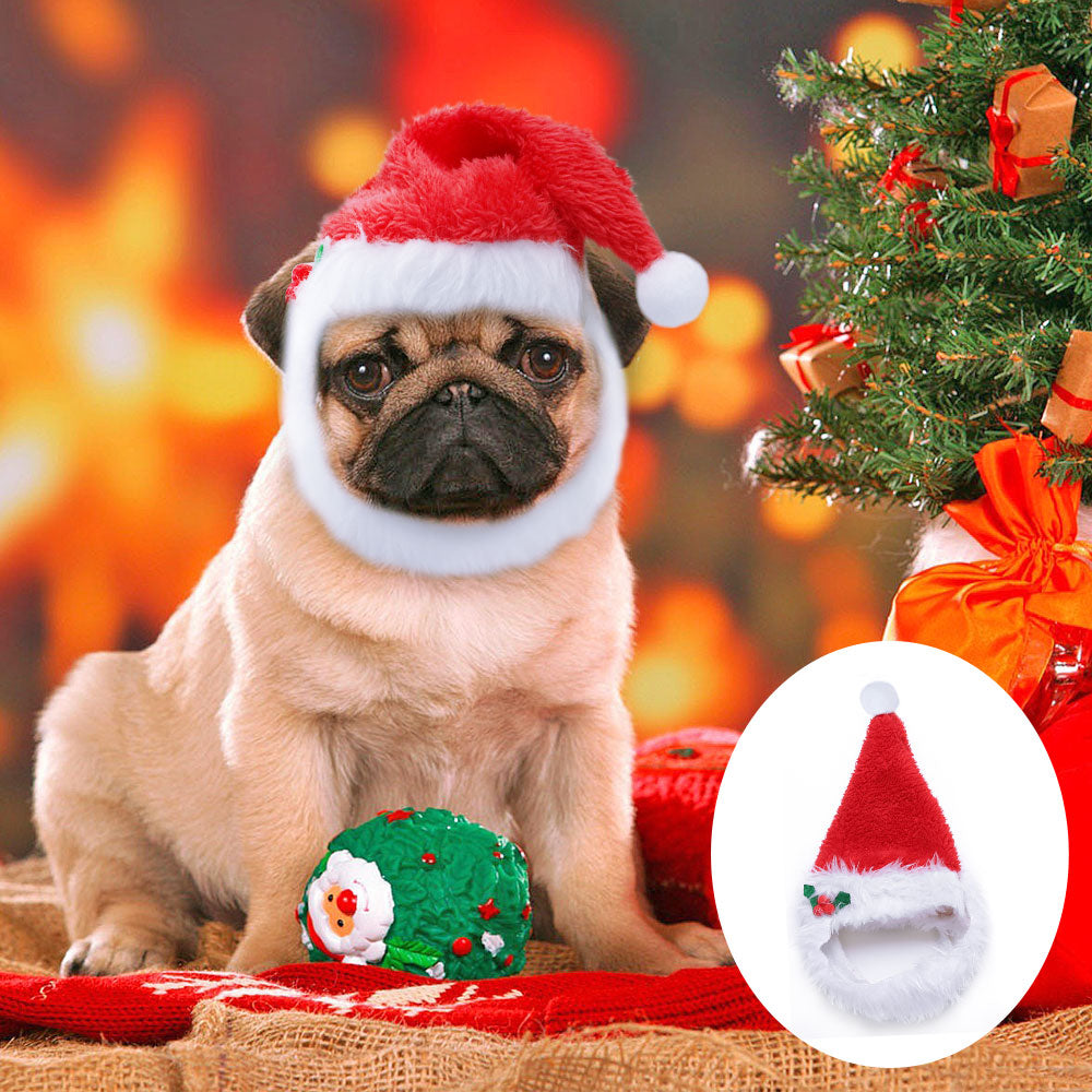 Christmas Hat for Dogs /Cat -  Sport Pet Shop
