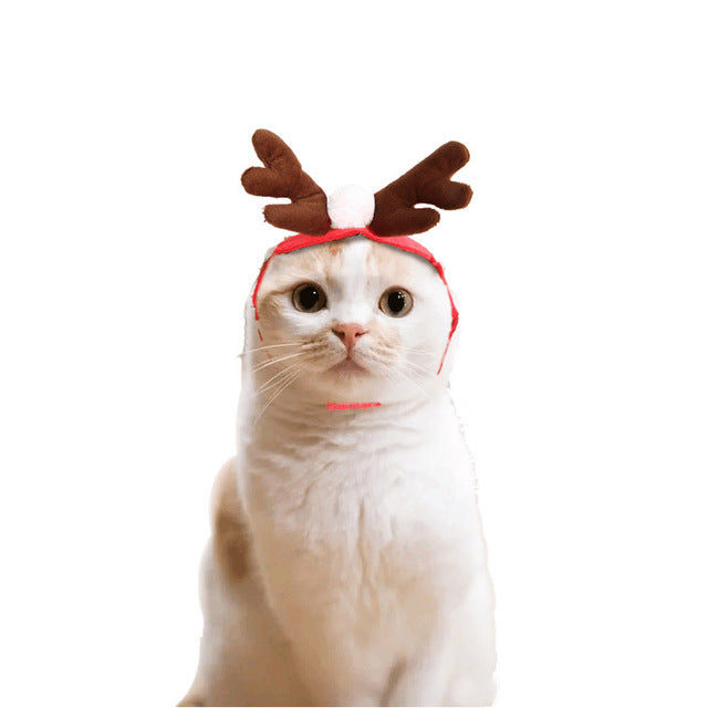Cat Christmas hat scarf suit cloak dress up -  Sport Pet Shop