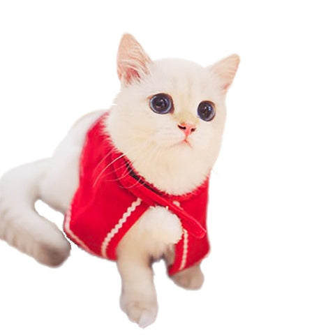 Cat Christmas hat scarf suit cloak dress up