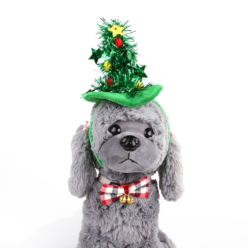 Christmas Tree and Witch Hat for Pets -  Sport Pet Shop