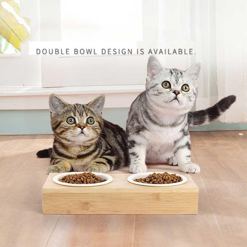 Ceramic Cat Bowl Bamboo Rack /  Double Bowl Automatic Drinking -  Sport Pet Shop