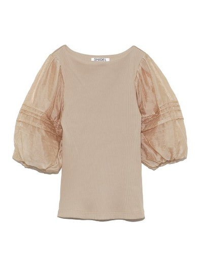Sheer Short Sleeve Top
