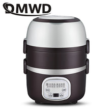 DMWD Mini Rice Cooker Portable 2/3 layers Meal Lunch Box Steamer Thermal Cooking Pot Food Heating Electric Lunchbox Container EU