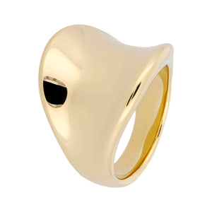 CONCAVE POLISHED RING - WSRE00031