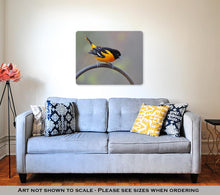 Load image into Gallery viewer, Metal Panel Print, Male Baltimore Oriole