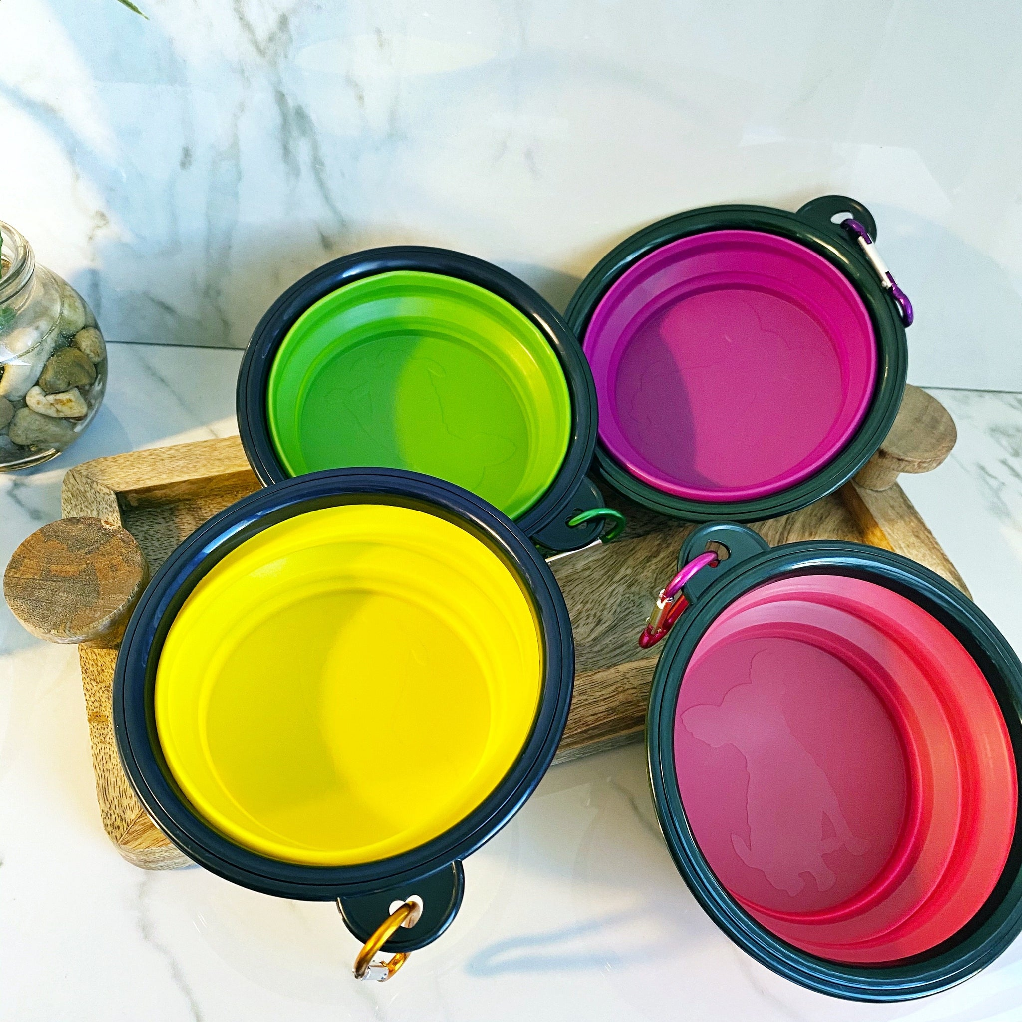 READY TO SHIP * Collapsible Portable Pet Bowls