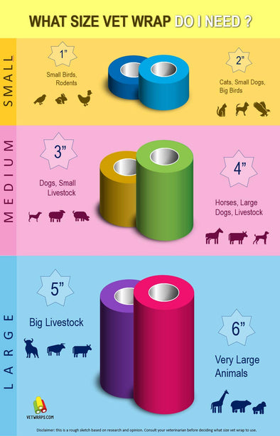 Vet Wrap Sizes Infographic
