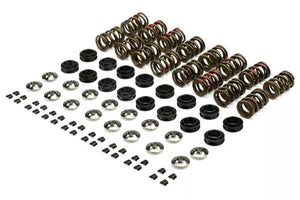 Cosworth EJ20/EJ25 Ultra High RPM Valve Spring Kit (Dual Spring with Titanium Retainer)