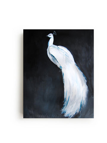 White Peacock II Canvas Print