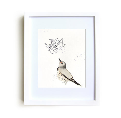 Northern Flicker Framed Print in White - Mai Autumn - Framed Prints
