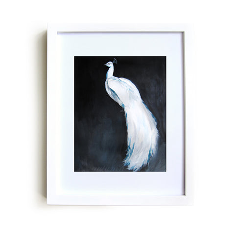 White Peacock II Framed Print in White