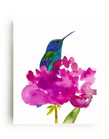 Hummingbird in a Peony Canvas Print