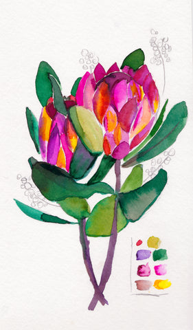 'Protea' Original Watercolor Sketch