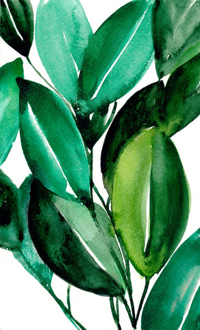 Rubber Tree Plant Original Painting