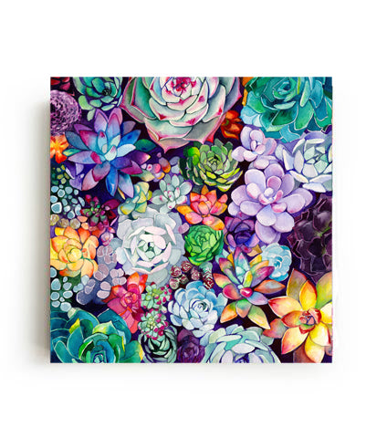 Succulent Garden Canvas Print - Mai Autumn - canvas prints
