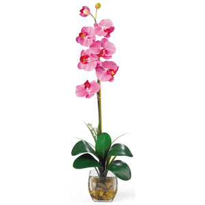 Single Phalaenopsis Liquid Illusion Silk Flower Arrangement - Dark Pink