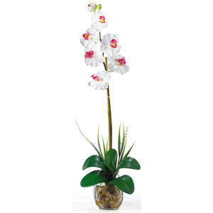 Single Phalaenopsis Liquid Illusion Silk Flower Arrangement - White