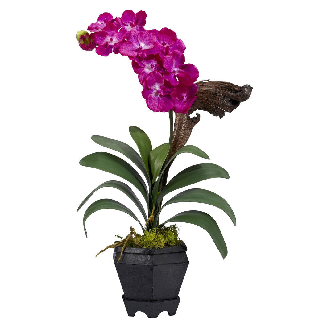 Vanda w/Black Hexagon Vase Silk Arrangement - Beauty