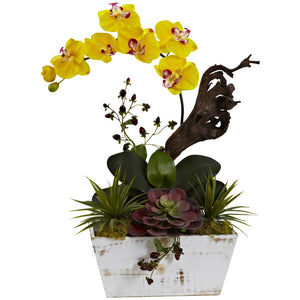 Orchid & Succulent Garden with White Wash Planter - Yellow