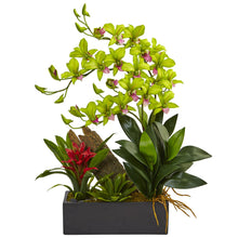 Load image into Gallery viewer, Dendrobium and Bromeliad Arrangement - Green