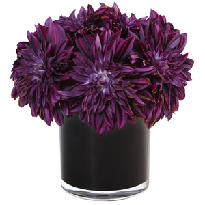 Dahlia Mum in Black Glossy Cylinder - Purple