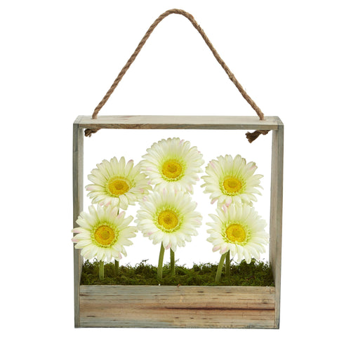 Gerber Daisy Garden Artificial Arrangement in Hanging Frame - Cream