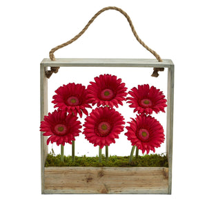 Gerber Daisy Garden Artificial Arrangement in Hanging Frame - Red