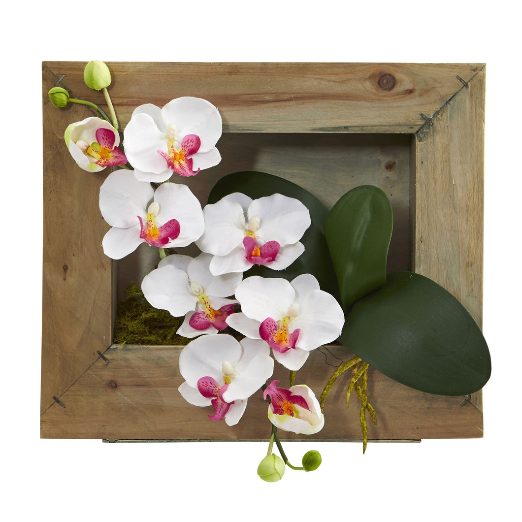 Phalaenopsis Orchid Artificial Arrangement in Wooden Picture Frame - White