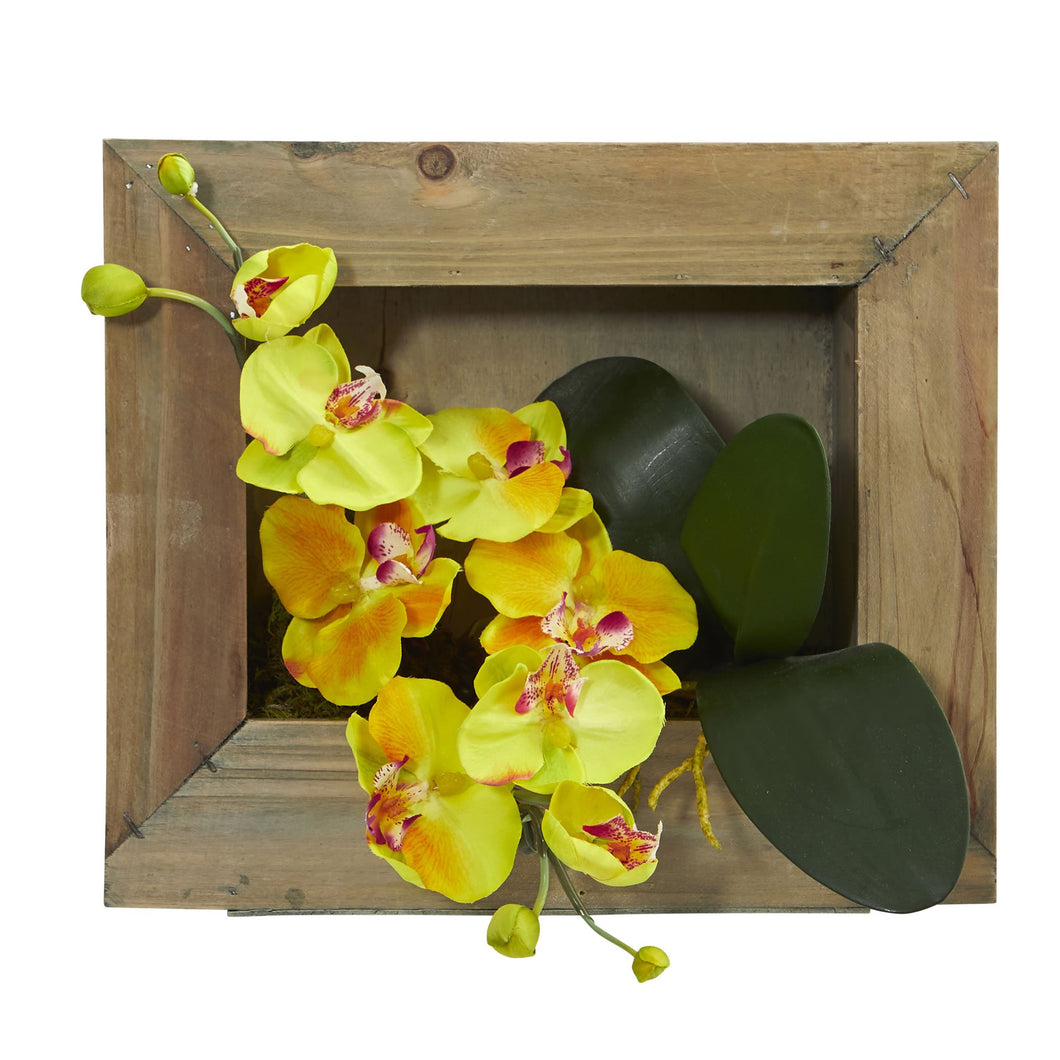 Phalaenopsis Orchid Artificial Arrangement in Wooden Picture Frame - Yellow