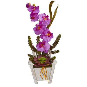 Phalaenopsis Orchid & Succulent Artificial Arrangement in Chair Planter - Orchid