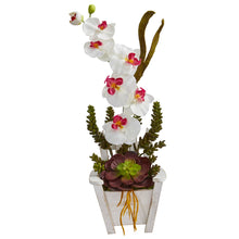 Load image into Gallery viewer, Phalaenopsis Orchid & Succulent Artificial Arrangement in Chair Planter - White