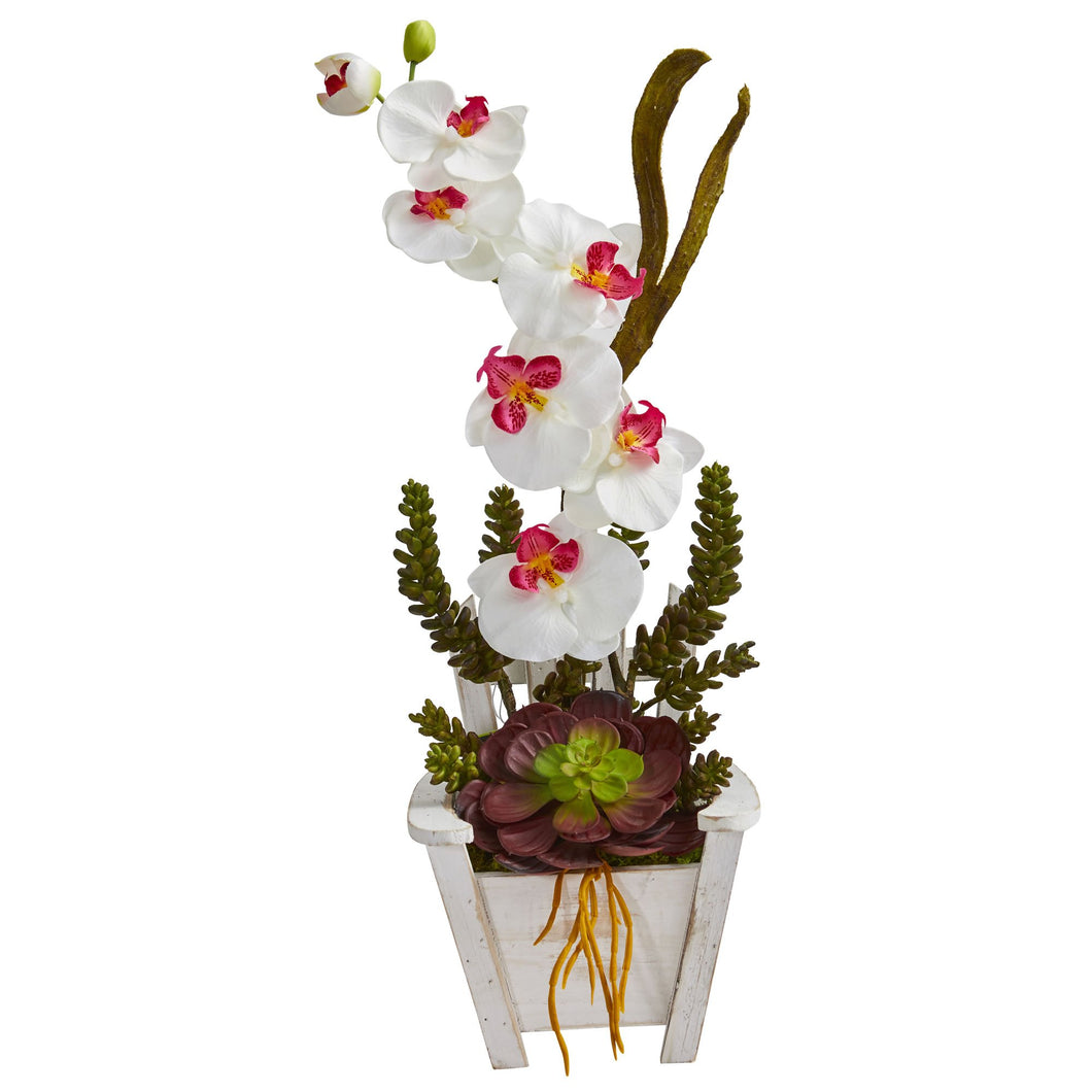 Phalaenopsis Orchid & Succulent Artificial Arrangement in Chair Planter - White