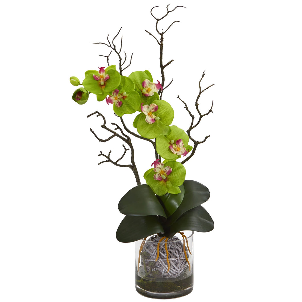 Phalaenopsis Orchid Artificial Arrangement in Vase - Green