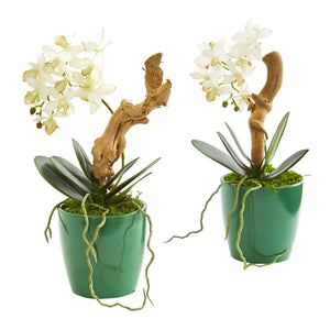 Mini Phalaenopsis Orchid Artificial Arrangement in Green Planter (Set of 2)
