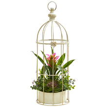 "Load image into Gallery viewer, 19"" Bromeliad & Succulent Artificial Arrangement in Bird Cage - Purple"